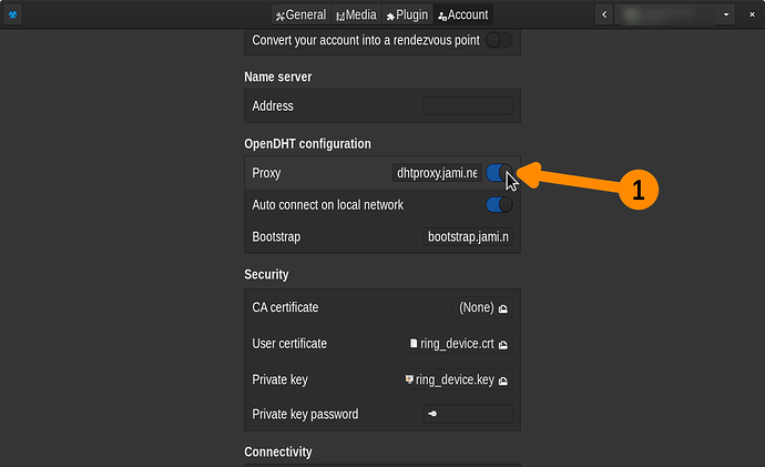 opendht_button-screenshot-francewhoa-ksnip-2021-05-07-121834_0